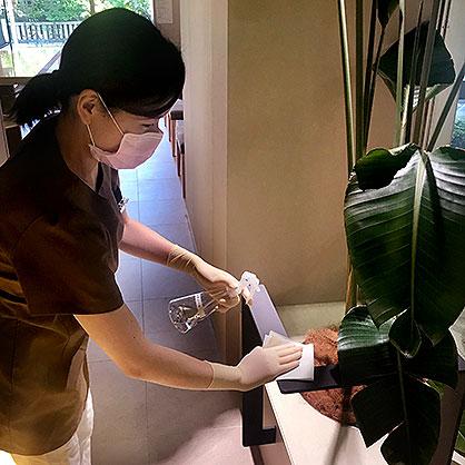 待合室観葉植物の消毒