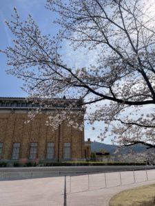 京都市左京区聖護院 美里歯科 新学期、新生活のはじまり