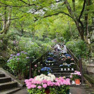 京都市左京区聖護院 美里歯科 16日水曜日午後の診療時間について